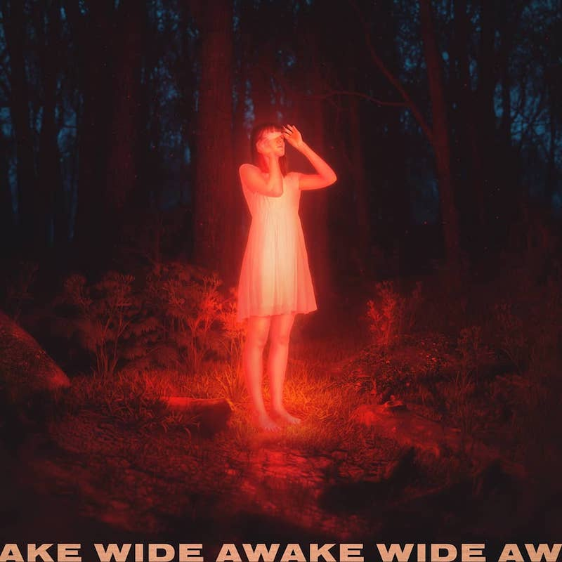 "Petit Biscuit - ""Wide Awake"" artwork"
