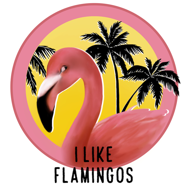 Ela Nedra + I Like Flamingo