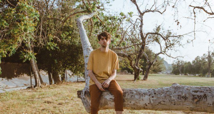 Johan press photo sitting on a tree