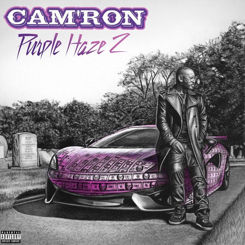"""Cam'Ron - """"Purple Haze 2"""" album cover"""