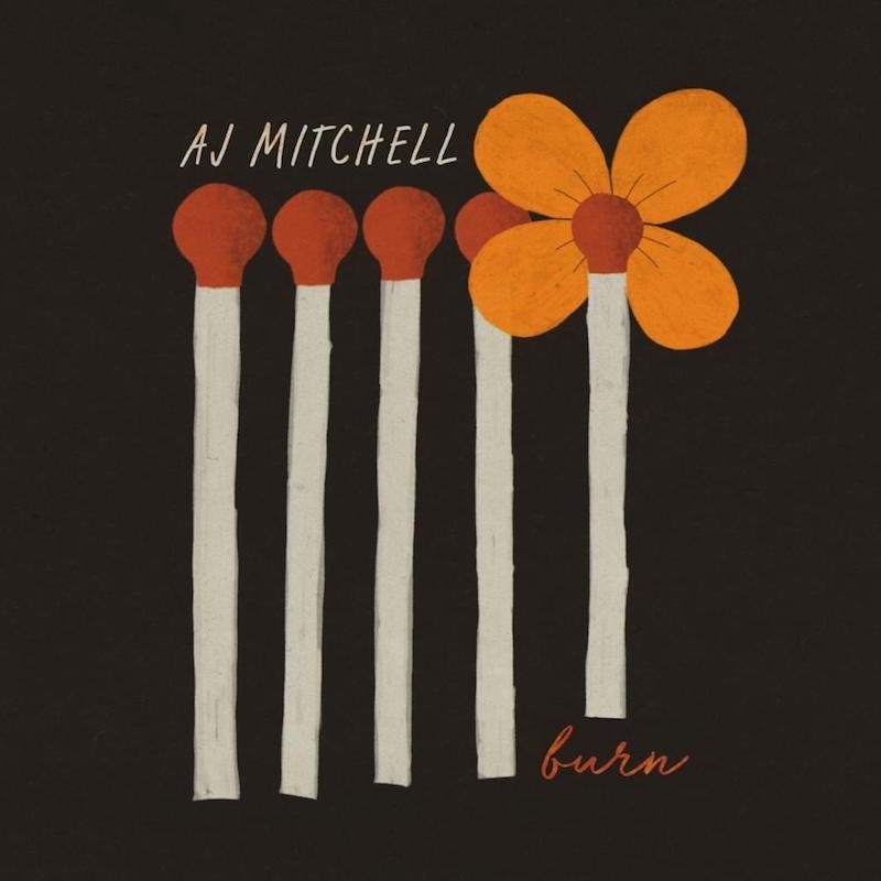 "AJ Mitchell - ""Burn"" cover"