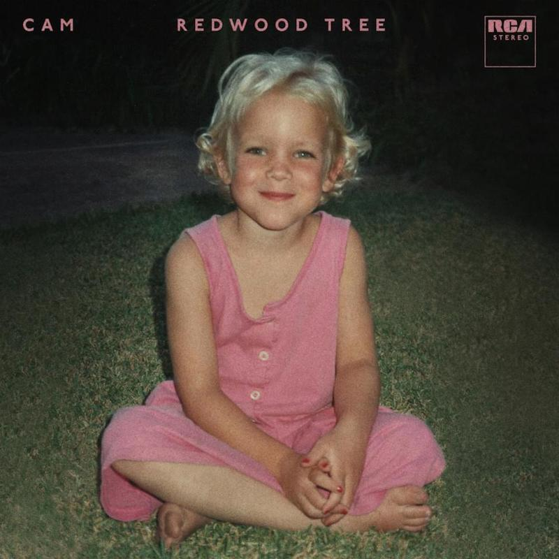 "Cam performs ""Redwood Tree"" cover"