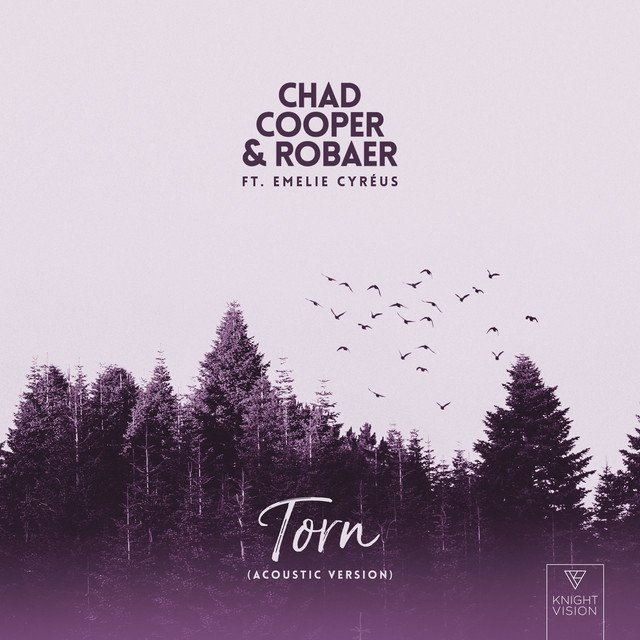 """Chad Cooper & Robaer – """"Torn (acoustic version)"""" cover"""