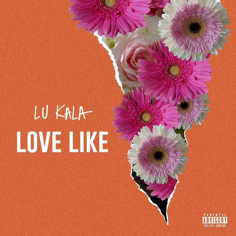 "LU KALA - ""Want You"" cover"
