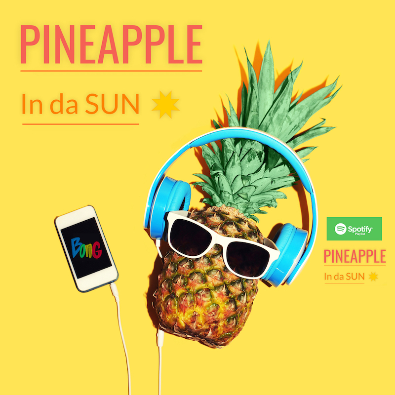 PineApple In da SUN banner