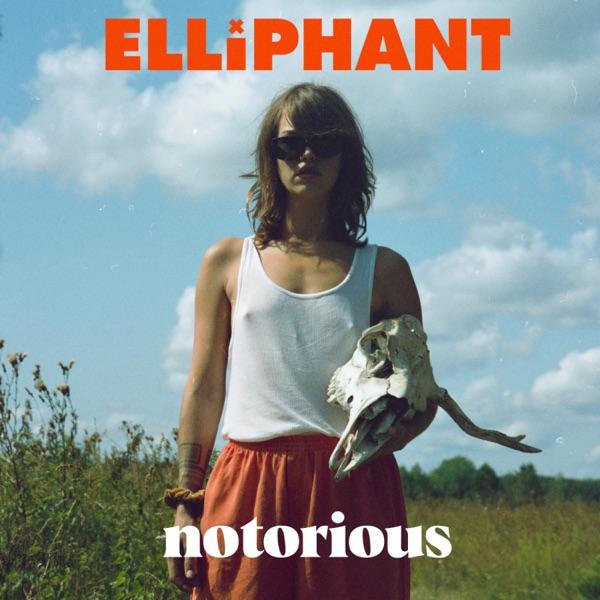 "Elliphant - ""Notorious"" single cover art"