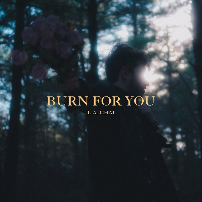 "L.A. Chaí - ""Burn for You"" song cover art"