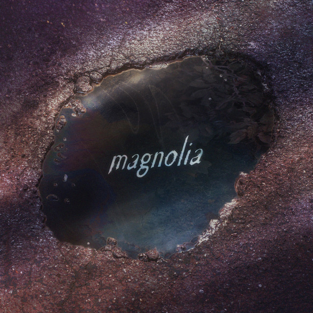 """Thomston – """"Magnolia"""" song cover art"""