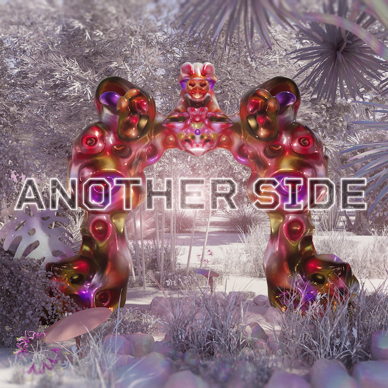 expanded edition - Nicolas Godin - Another Side - cover