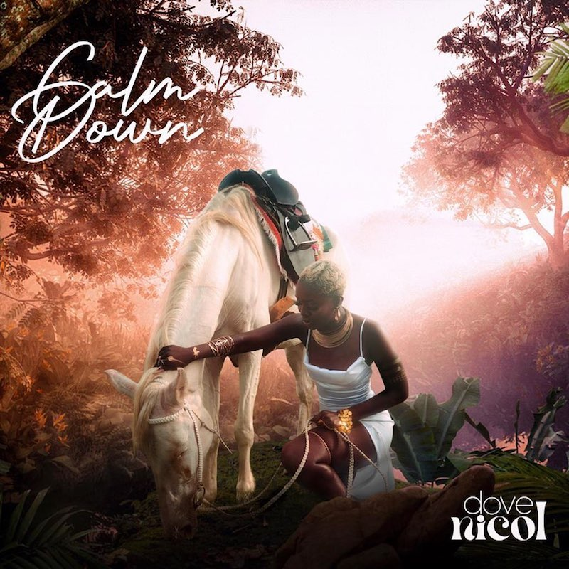 "Dove Nicol - ""Calm Down"" song cover art"